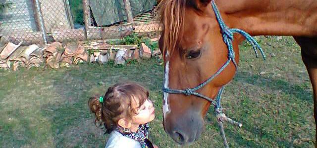 Bambini a cavallo, l'emozione di una gita fuori porta