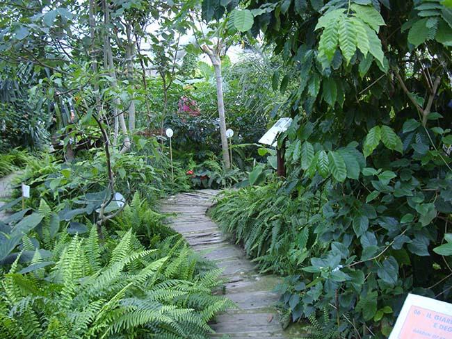 Orto botanico Cervia