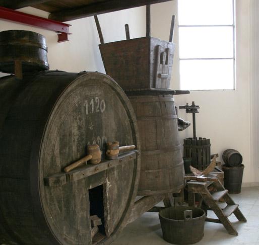 vino - MET Santarcangelo